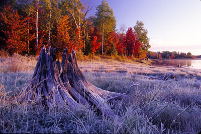 Frost on Stump Gile Flowage, Iron County