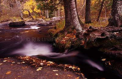 WI046931 Marinette - Strong Falls