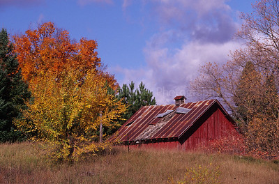 FA000193 Marinette - Red Barn - Fall Color