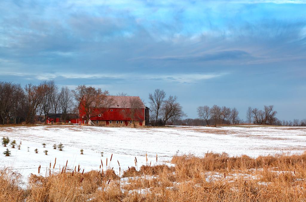 Red Winter - Wisconsin Farm (Washington County - Wisconsin)