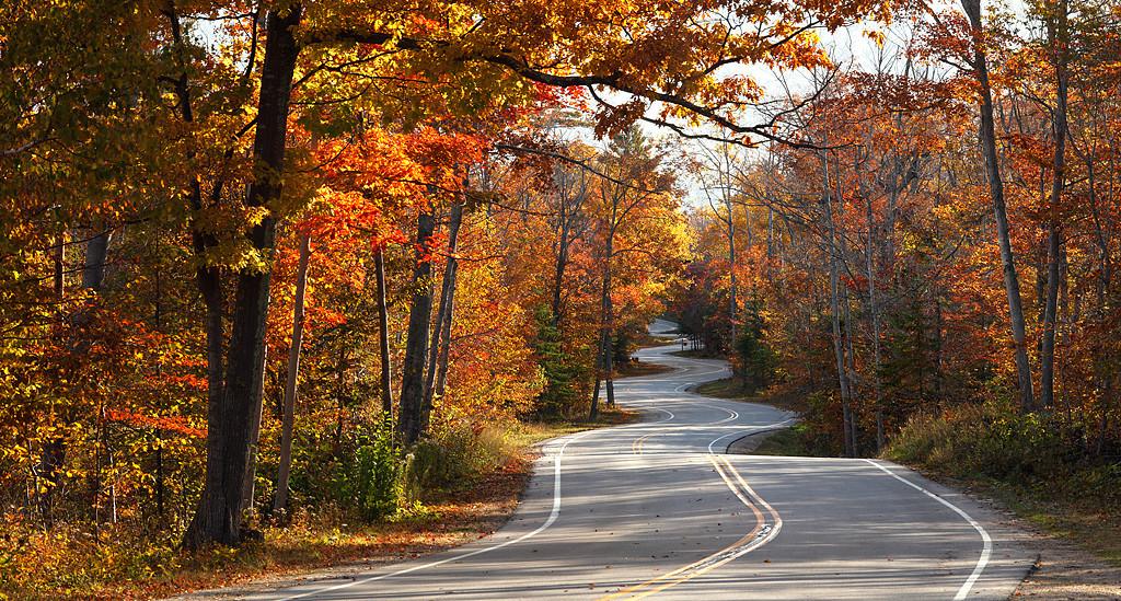 Tummytickle II - Road to Northport (Door County - Wisconsin)