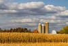 A dairy farm with barns and silo near Minocqua, Wisconsin, USA.