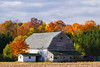 An old barn with fall foliage color in the forest near Minocqua, Wisconsin, USA.