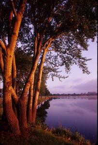 Lake Monona - Madison