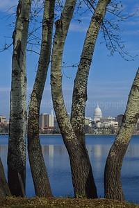 WI044031 Dane - Capital Building, Madison, WI Lake Monona.jpg