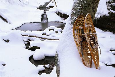 WI029249 Sauk - Parfrey's Glen - Winter