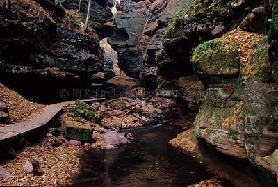 WI027082 Sauk - Parfrey's Glenn - Canyon