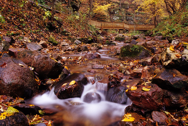 WI035996 Sauk - Parfrey's Glenn - Creek