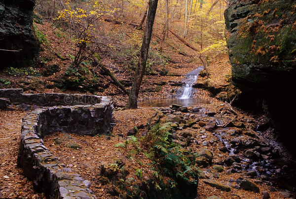 WI027043 Sauk - Parfrey's Glenn - Rock Wall