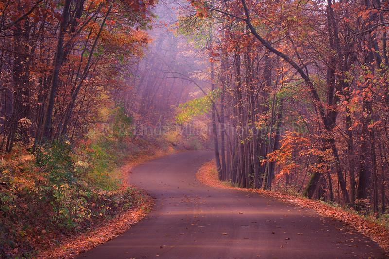 40043 Winding Road Wildcat Mtn St Park