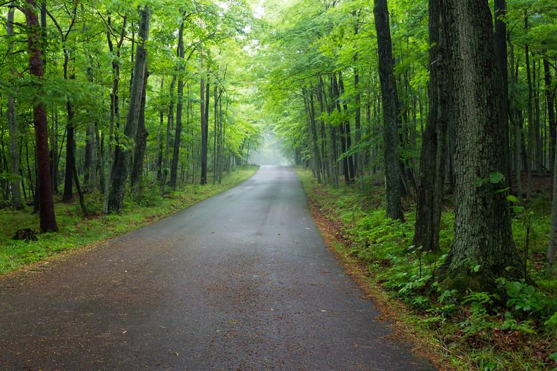 Shore Road