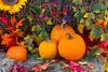 Autumn street decor with pumpkins in Phillips, Wisconsin, USA.