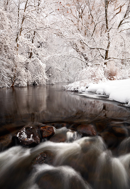 Snowy White II - East Branch Milwaukee River (Kettle Moraine State Forest - Northern Unit)