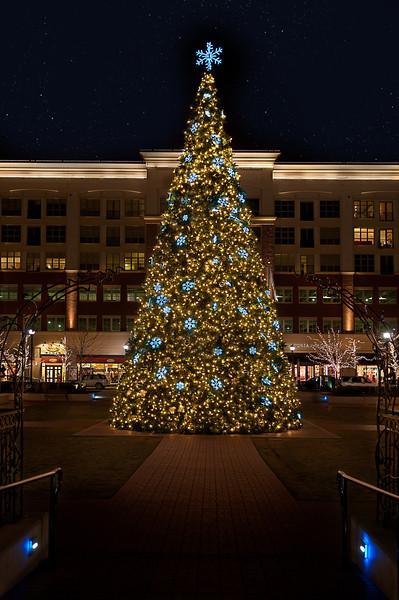 Mall Tree