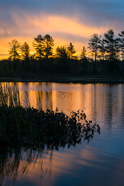 WI 196<br /> <br /> Sunrise reflections on the shoreline of a secluded north woods lake.  Oneida County, Wisconsin.