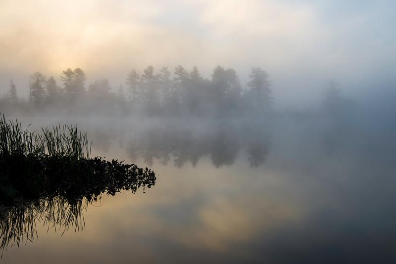 WI 121      Fog enshrouds the shoreline of Little Bearskin Lake at sunrise on a crisp September morning in the Northwoods.