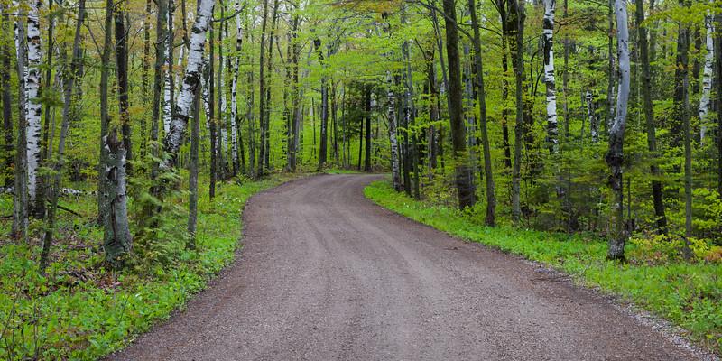 Ellison Bluff County Park road in spring. Ellison Bay, WI<br /> <br /> WI-100514-0002