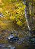 WI 192<br /> <br /> An intimate autumn scene along the Manitowish River in northern Wisconsin.