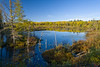 WI 177<br /> <br /> Morning light on a bog along Little Bearskin Trail in Oneida County, Wisconsin.