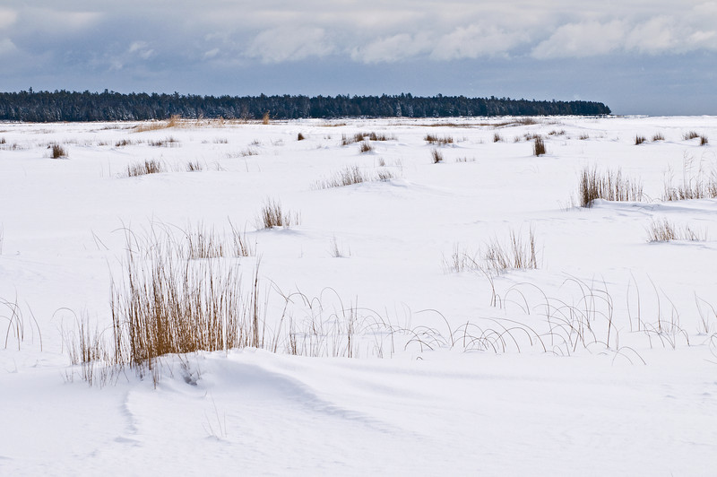 WI 080                         Drifting snow and winter grasses cover the frozen surface of North Bay in Door County, WI.