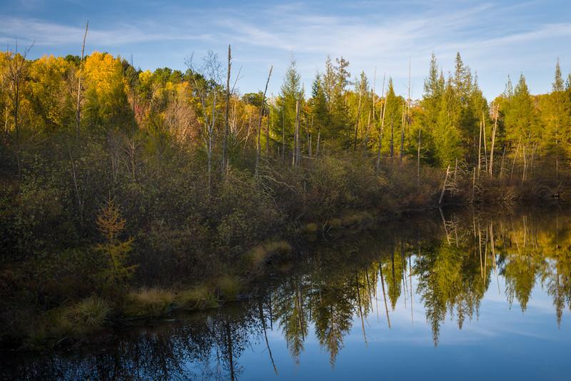 WI 176<br /> <br /> Shoreline reflections along Little Bearskin Creek in northern Wisconsin.