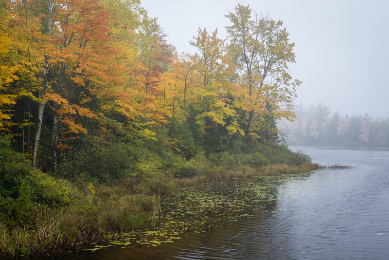 WI 165<br /> <br /> A misty autumn morning along Rice Creek in the Northwoods of northern Wisconsin
