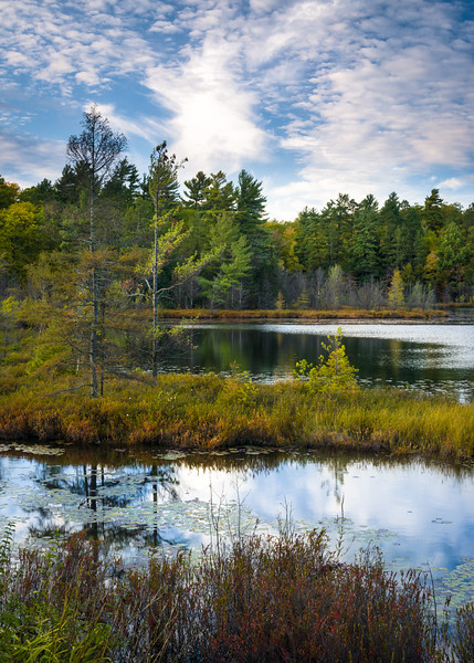 WI 182<br /> <br /> Fall color on the shoreline of Little Carr Lake in northern Wisconsin.