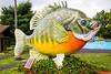 Freshwater Fishing Hall of Fame