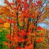 20151008_Wisconsin_0928