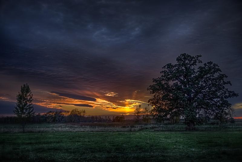 Backyard Sunset