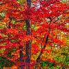 20151003_Wisconsin_0535