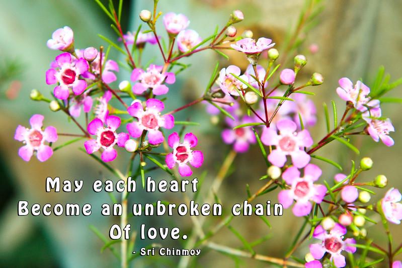 f-26 may each heart 33