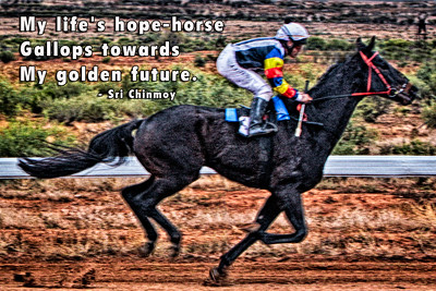 a-13 my lifes hope horse2