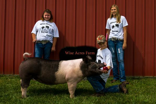Wise Acres Farm Photos