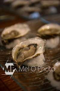 Oysters-22