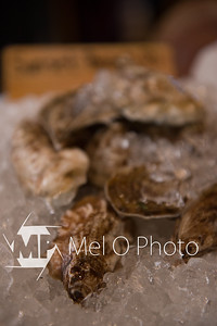 Oysters-5