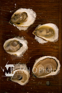 Oysters-21