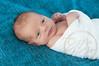 Parker_Newborn_209