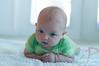 Parker 5 month 117-proof