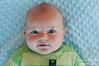 Parker 5 month 115-proof