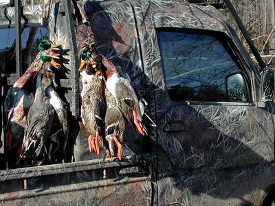 Hunting Pics 158
