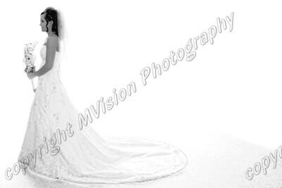 bride alone white6smaller