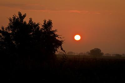 Sunrise on a Misty Summer Morning