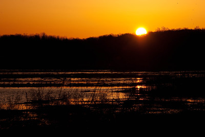 Sun Rising over the Marsh