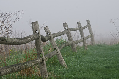 Wooden Rail Fence on a Foggy Spring Morning