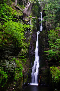 Silverthread Falls in the Fresh Green of Spring