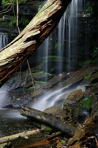 Private Waterfall Deep in the Forest