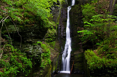 Silverthread Falls in the Fresh Green of Spring
