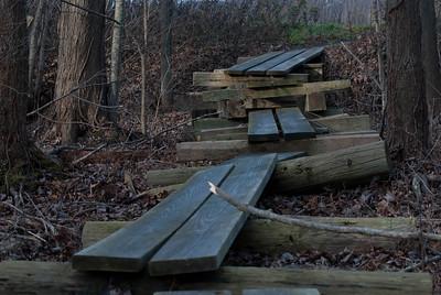 Wooden Walkway - 4