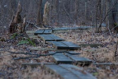 Wooden Walkway - 3